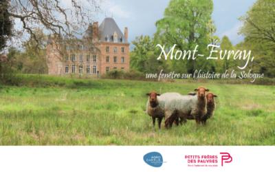 Mont-Evray, une fenêtre sur l'histoire de la Sologne